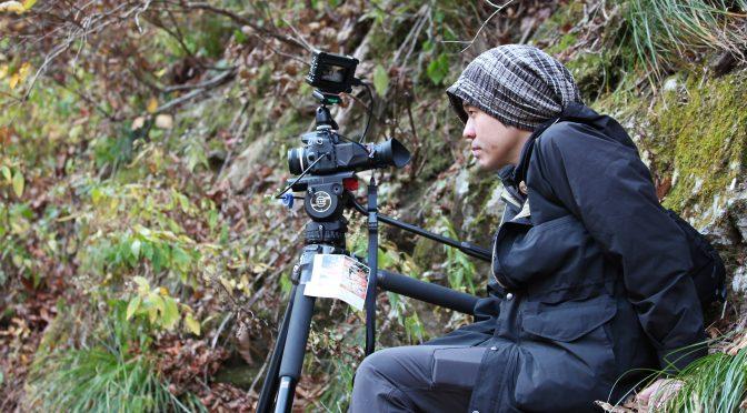映画『アルビノの木』 金子雅和監督インタビュー:5月27日から劇場公開(横浜ジャック&ベティ)